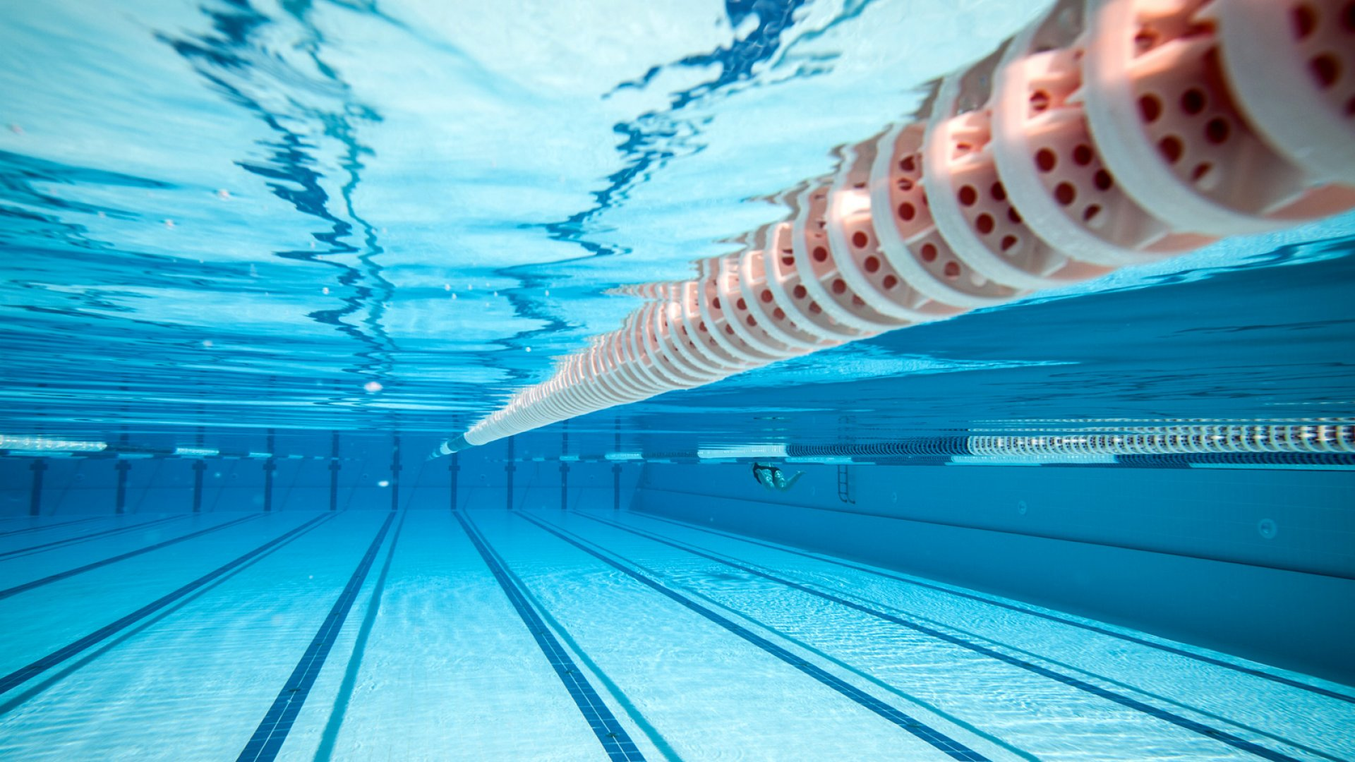 Entrepreneurship: Will You Sink or Swim?