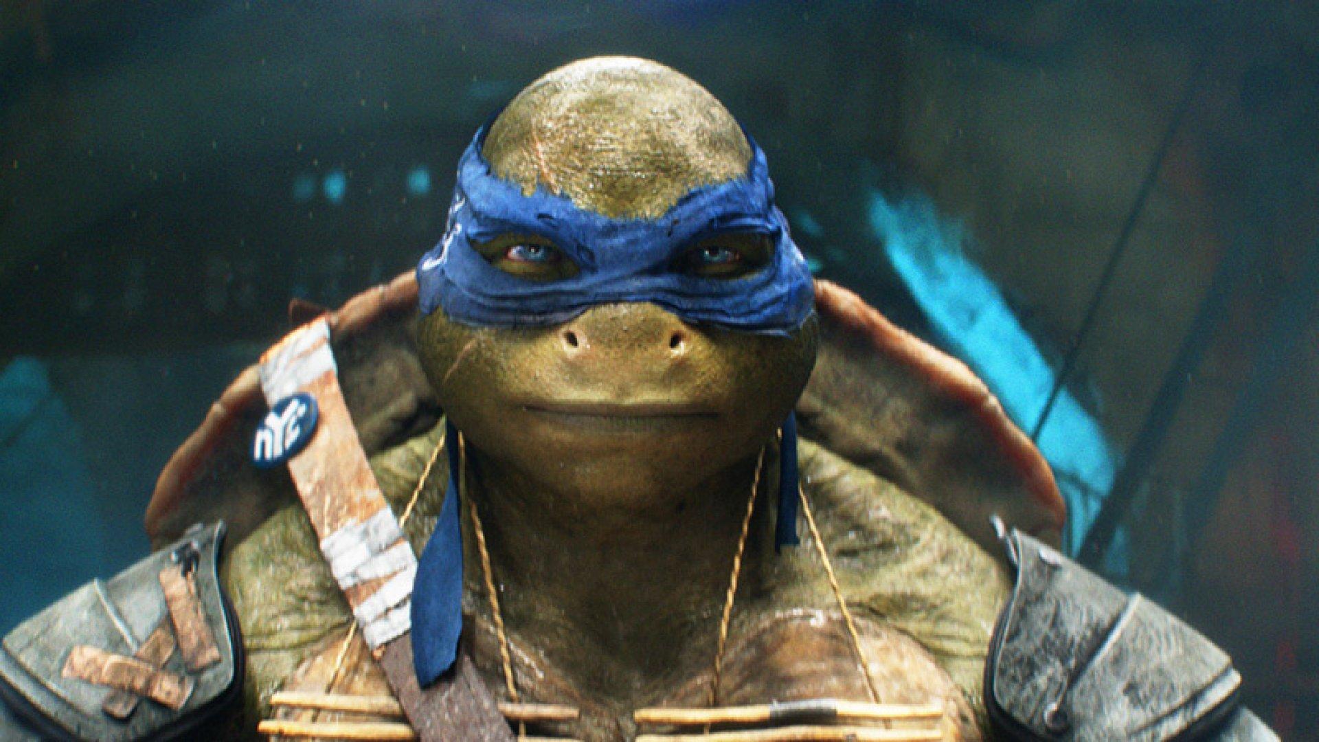 Leadership Lessons From The Teenage Mutant Ninja Turtles Inc Com