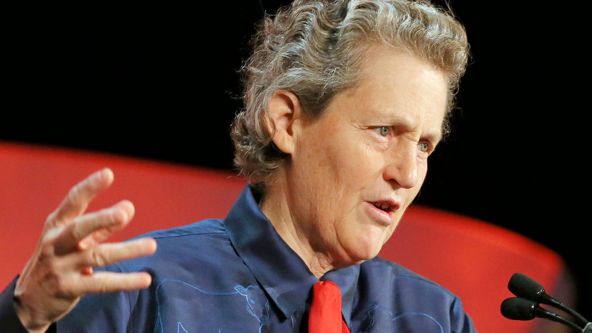 "Temple Grandin on ""Happy Aspies,"" Autism, and Start-Ups"