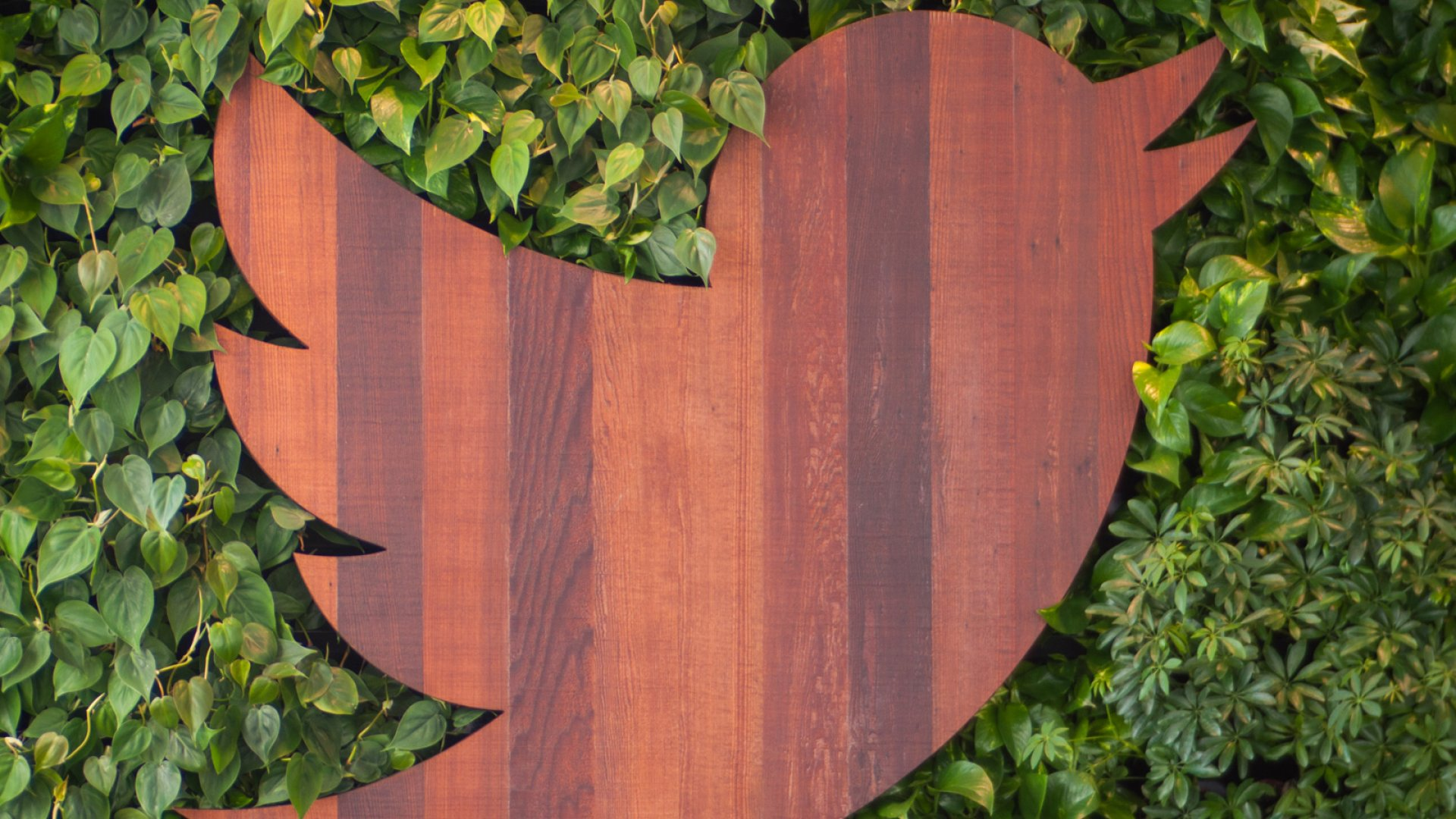 A Former Twitter Employee Is Suing the Company for Gender Discrimination