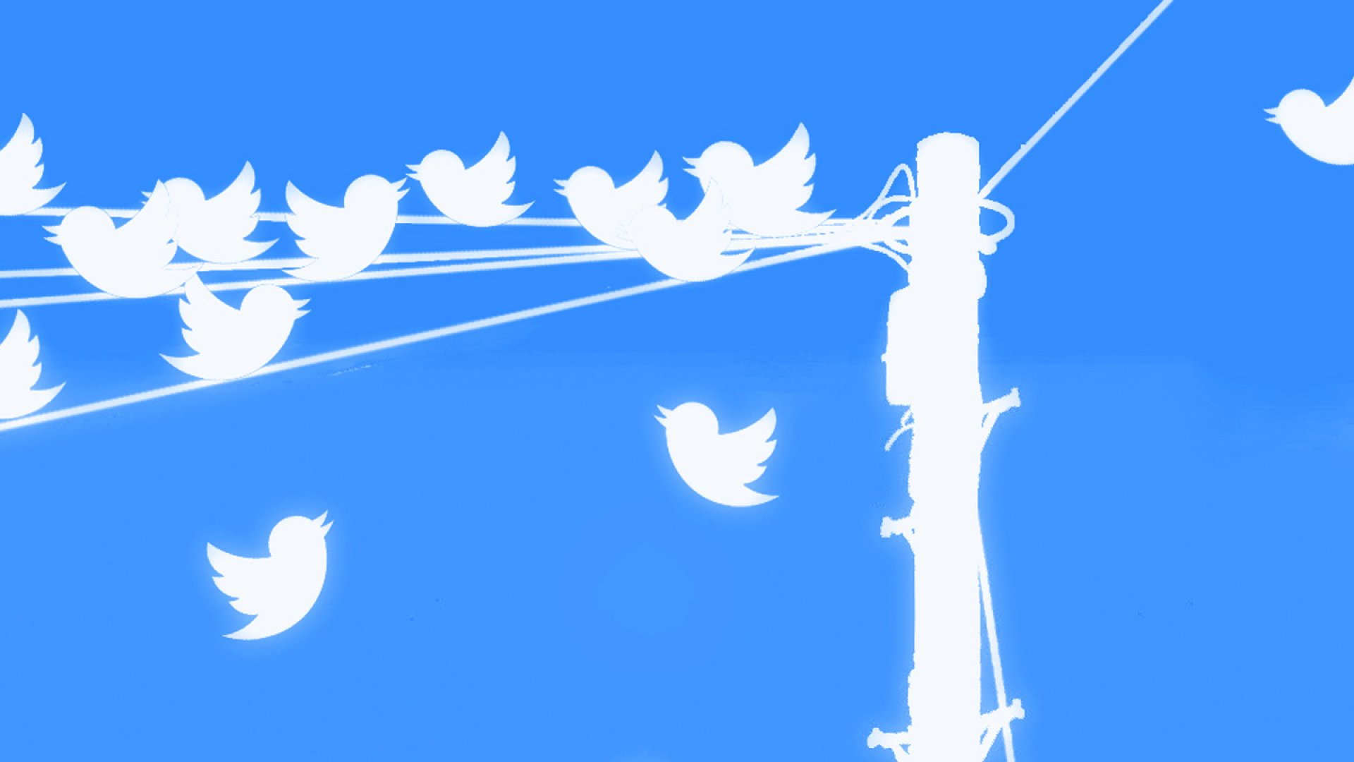 Dump the Ego and Be Positive: How to Get More Twitter Followers