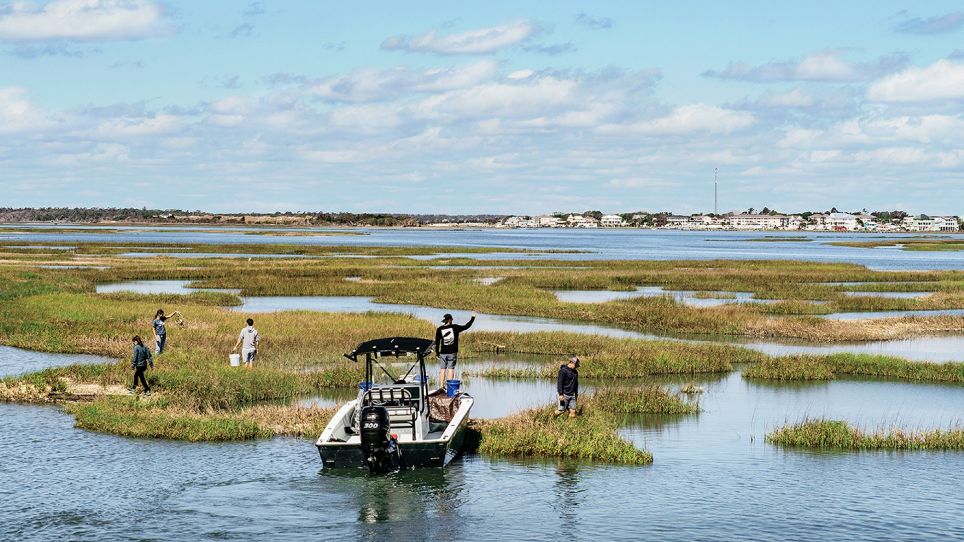 On Bogue Sound, which separates the barrier island from the mainland, Transportation Impact employees patrol tidal grasses for debris to haul away.