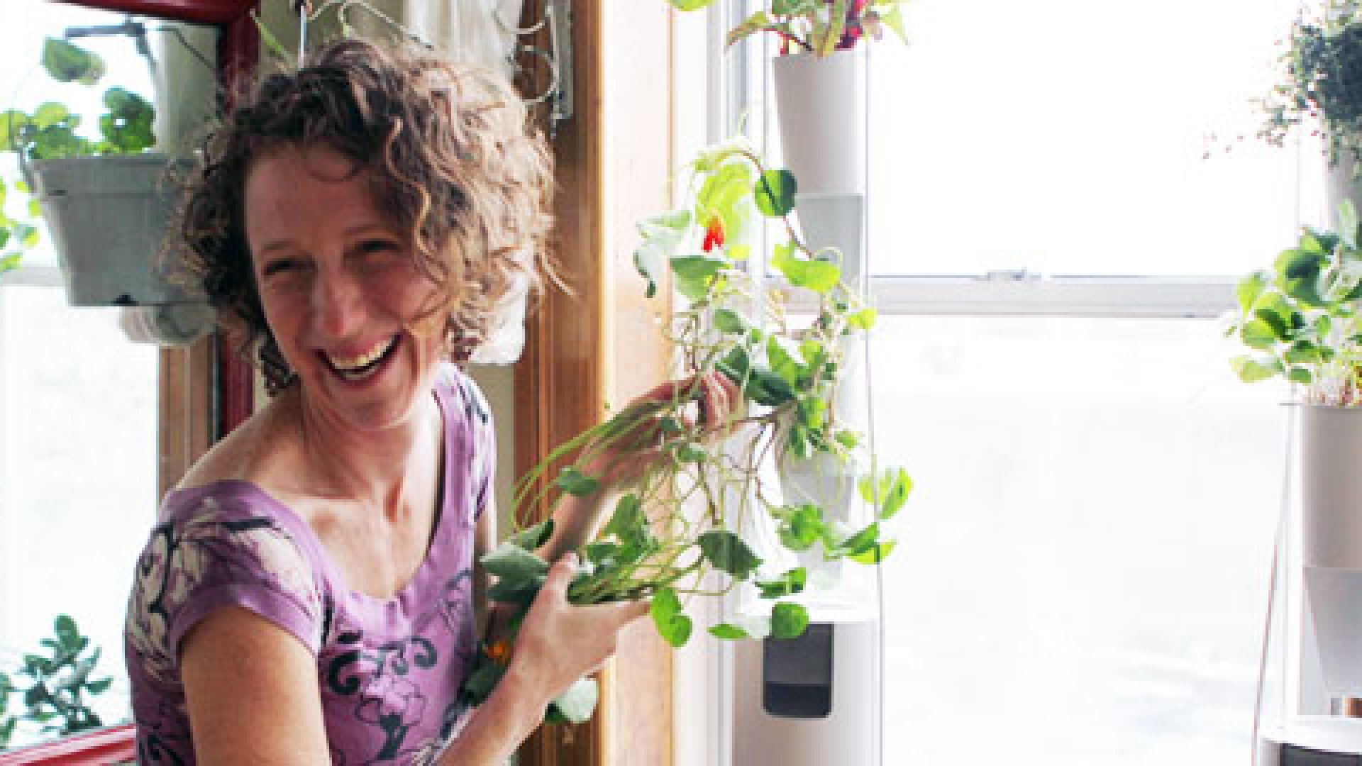 Britta Riley's Brooklyn, New York-based Windowfarms sells a manufactured kit for in-window food growing, which was based on a crowd-sourced design model.