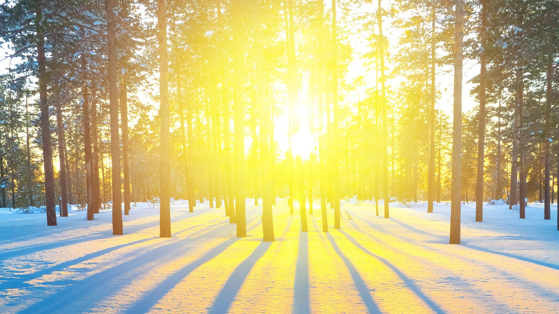 10 Ways to Beat the Winter Blues: Your Business Will Thank You