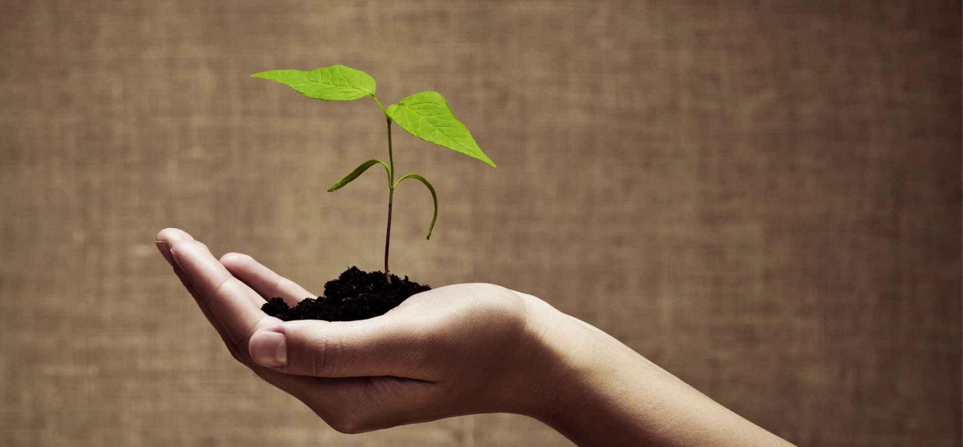 A Serial Entrepreneur's 4 Keys to Success