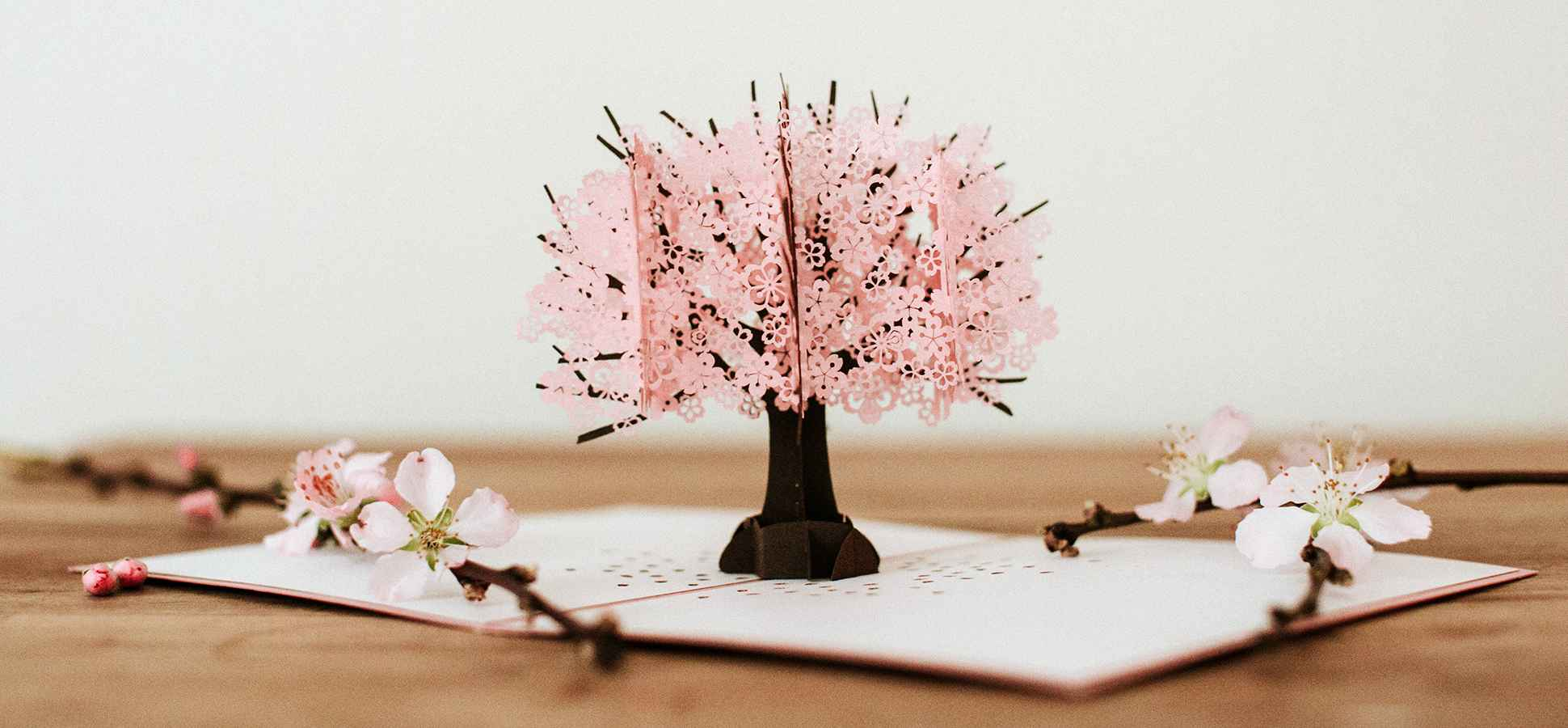 Cherry Blossom Lovepop 3 D Greeting Card