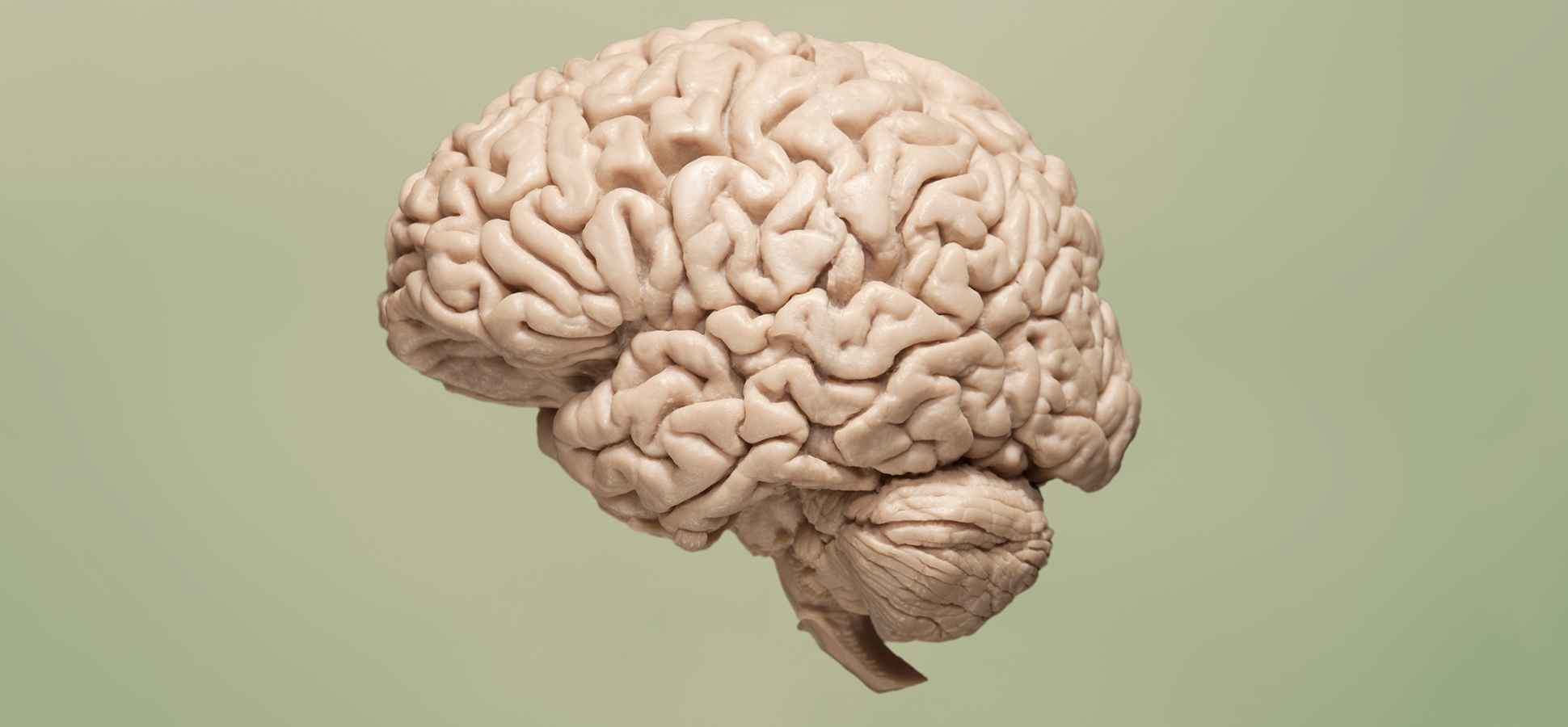 Science Says This Tiny Change in Behavior May Increase Your Brainpower