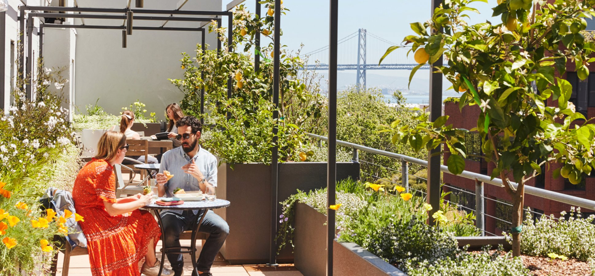 From PayPal to LinkedIn, These Are the Coolest Outdoor Workspaces of 2019