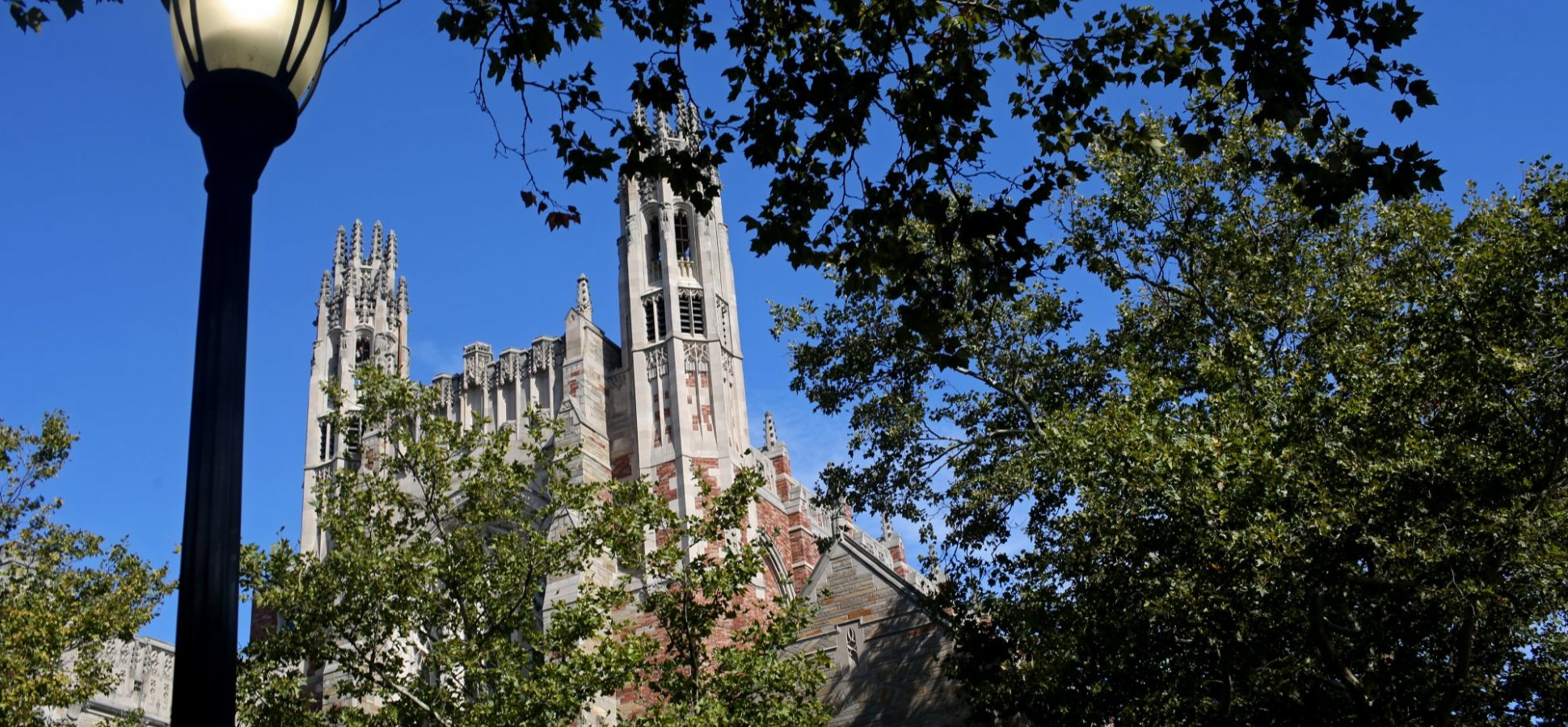 Yale Let Anyone Take Its Most Popular Class Ever for Free. Here's What 1 Guy Learned in 5 Weeks.