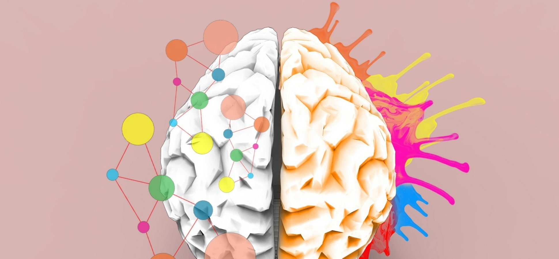 When Real Learning Happens in the Brain, According to Neuroscience