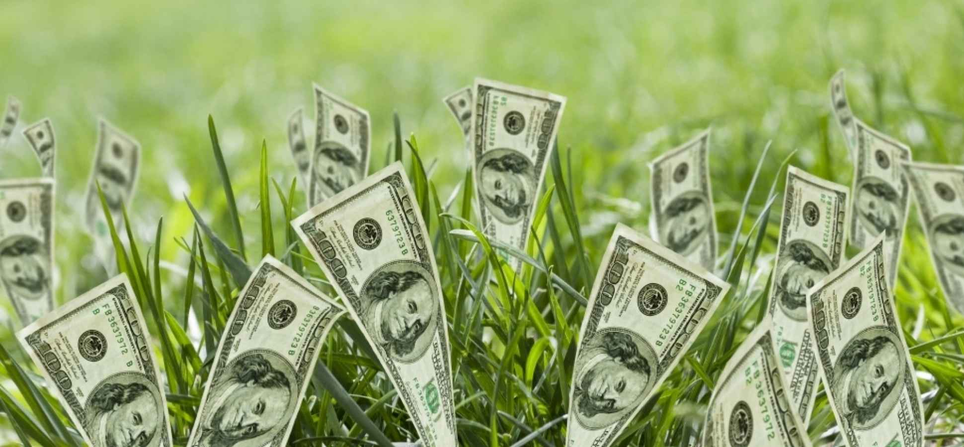 How Investing is Evolving to Include Sustainability