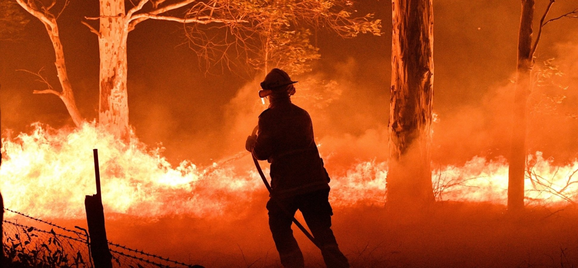 Why Australia's Devastating Bushfires are an Entrepreneurial Call to Action