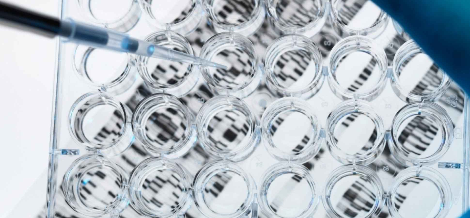 3 Questions That Reveal Your Entrepreneurial DNA