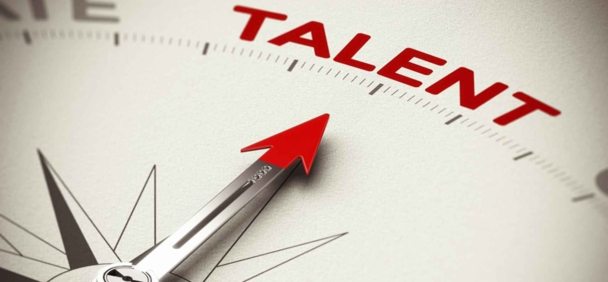 High-Impact HR for Entrepreneurs: A Cautionary Perspective