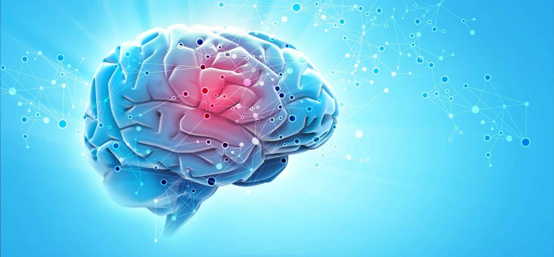 Want to Maximize Your Brain Power? Follow This 8-Step Method