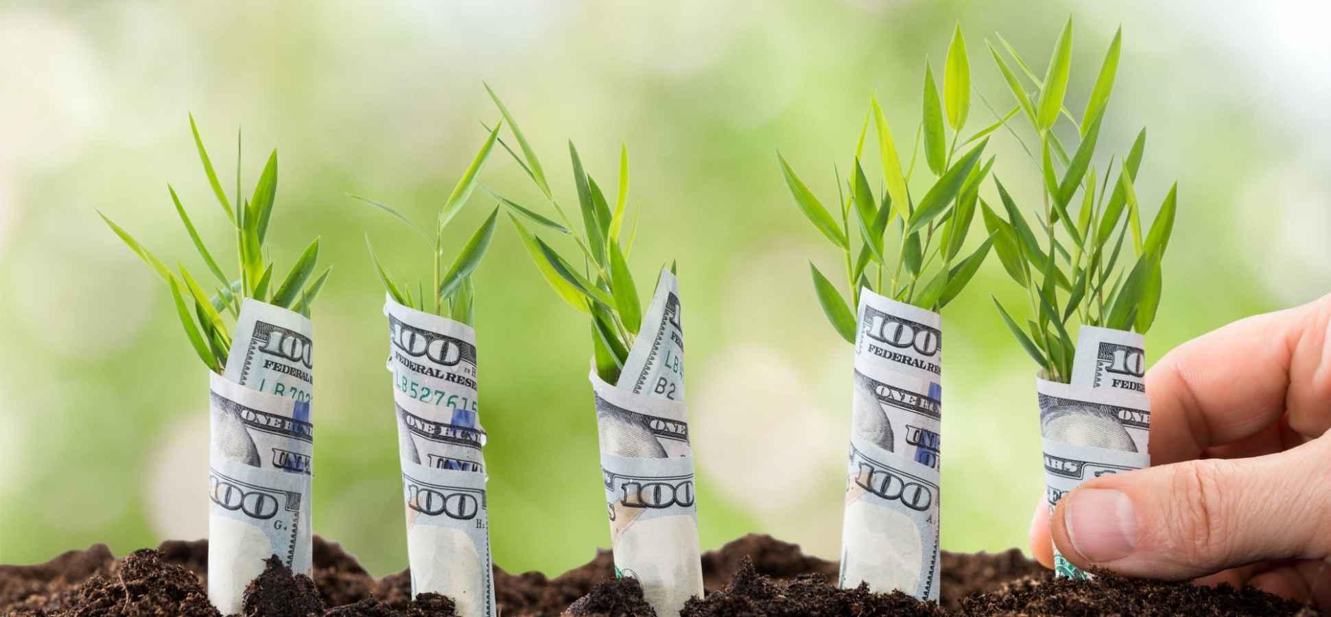 Entrepreneurs, Don't Make This Mistake When Raising Capital