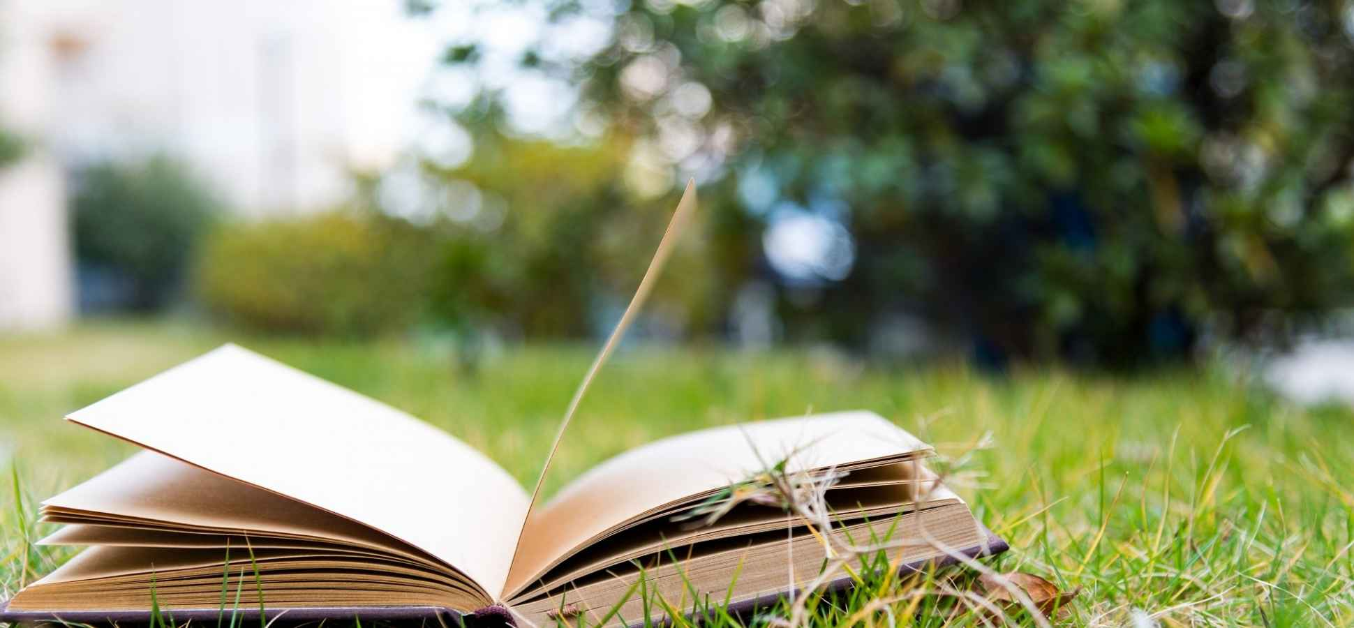 5 Books That Are Guaranteed to Boost Your Happiness
