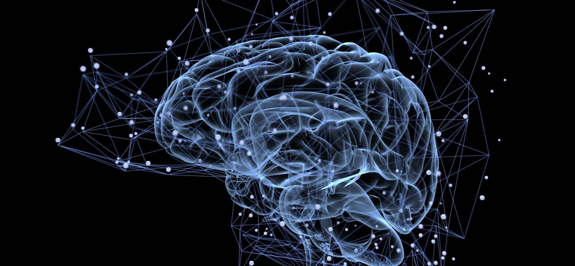 The Secret to Designing the Next Multi-Billion Dollar Brand: Leverage the Lizard Brain