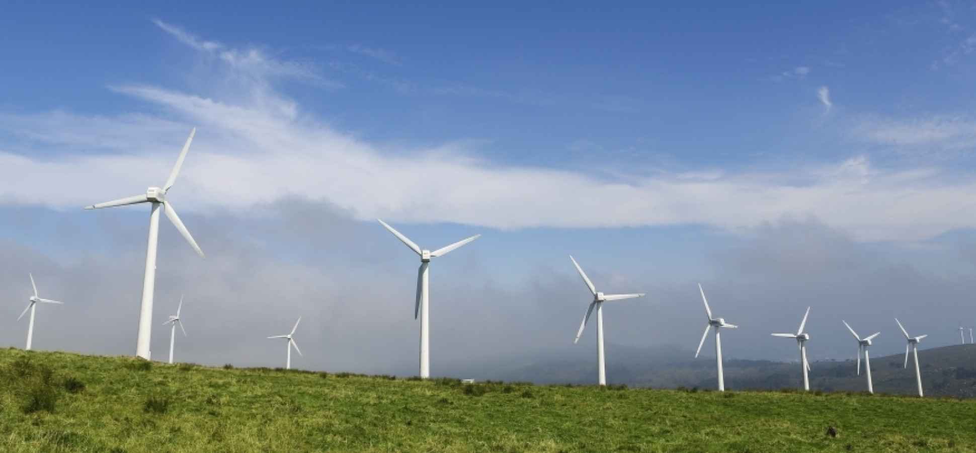 Three of the Hottest CleanTech Companies on the Planet