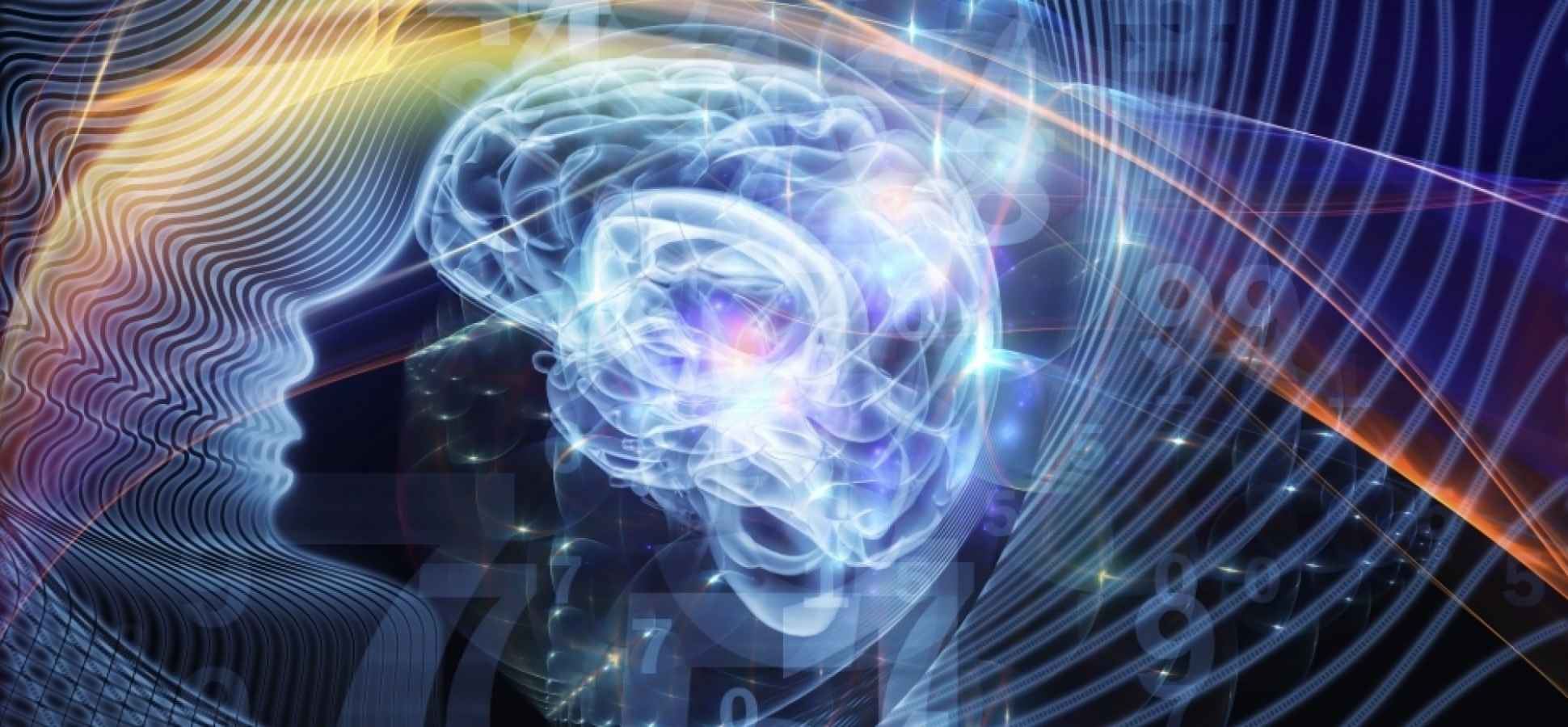 The Science of Memory: How to Effortlessly Boost Your Retention and Recall