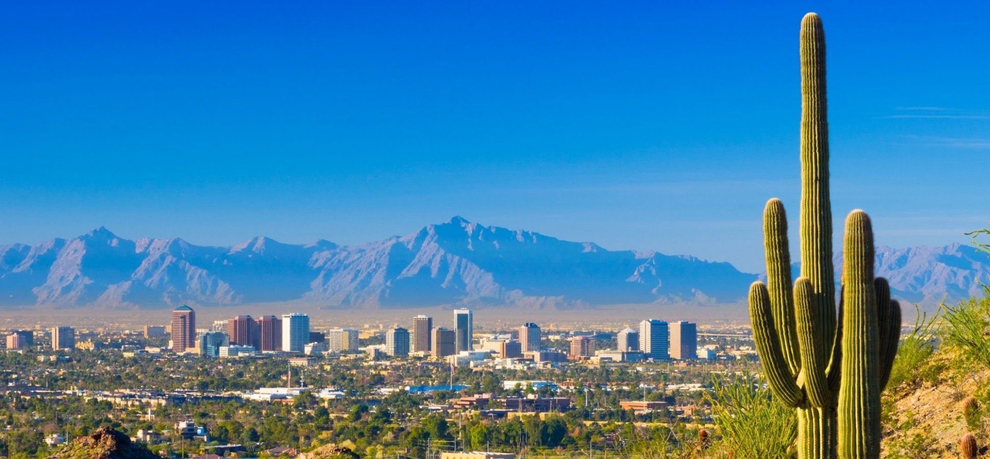 Four Reasons Why Phoenix's Entrepreneurial Ecosystem is Thriving