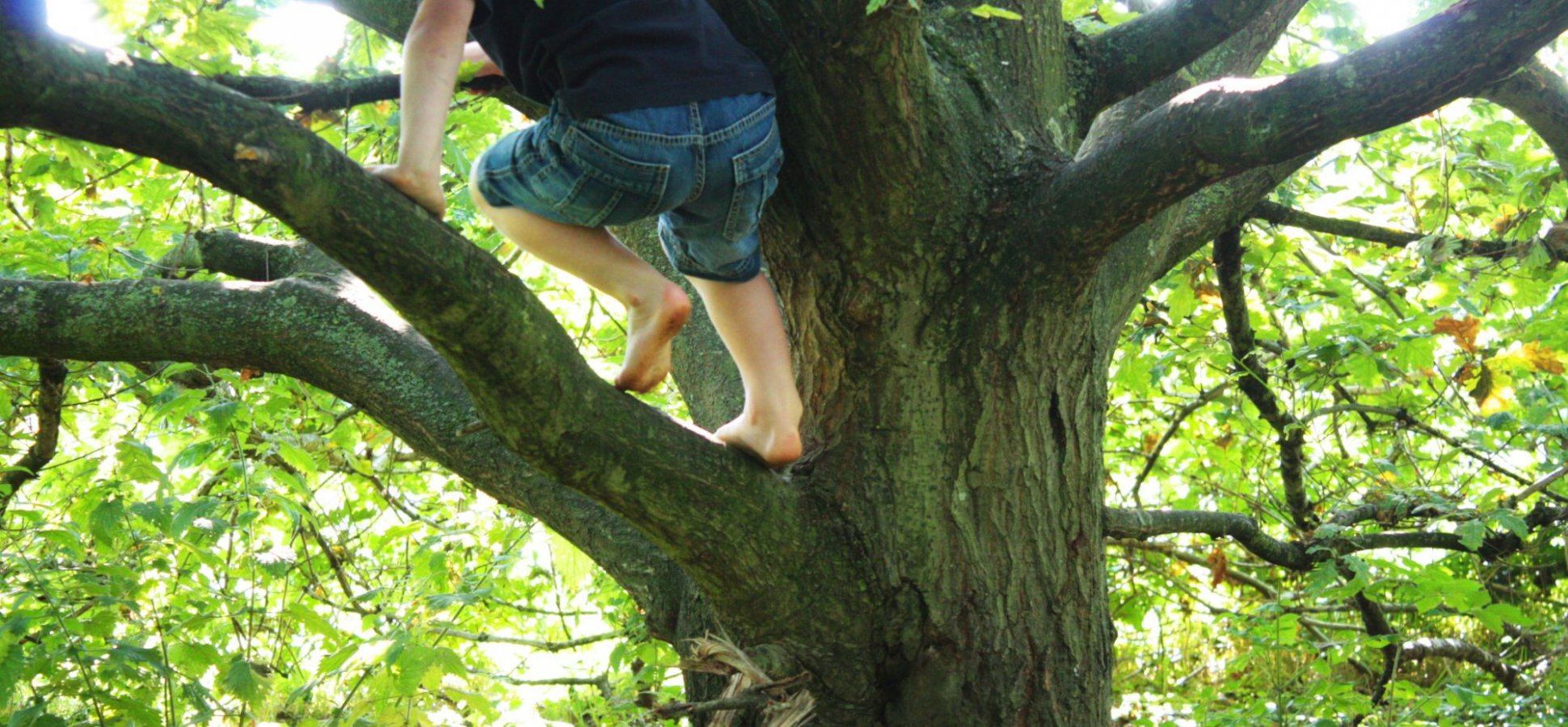 Here's Why Researchers Say Your Kids Need to Spend More Time Outdoors This Summer