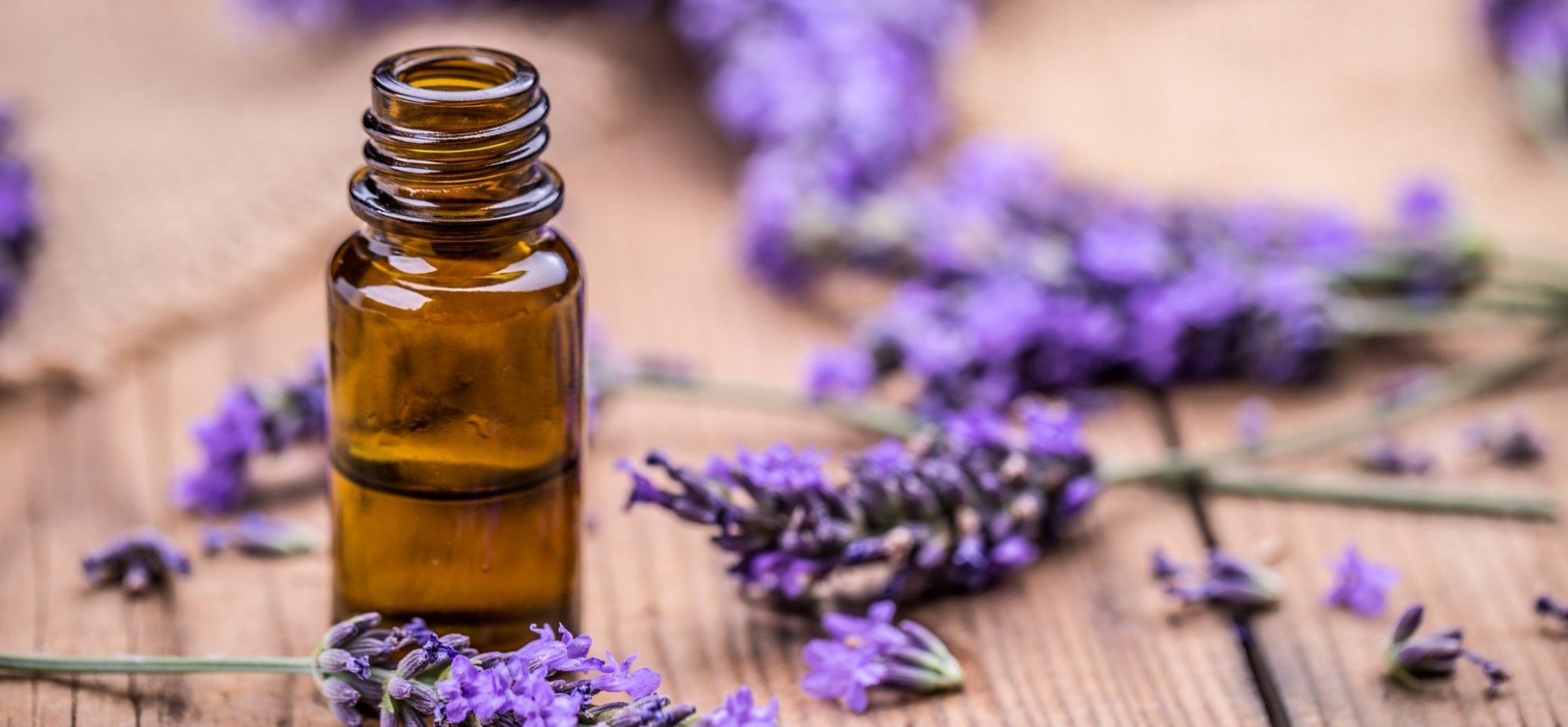 Scent of Success: Studies Show Aromatherapy Can Boost Your Memory and Focus