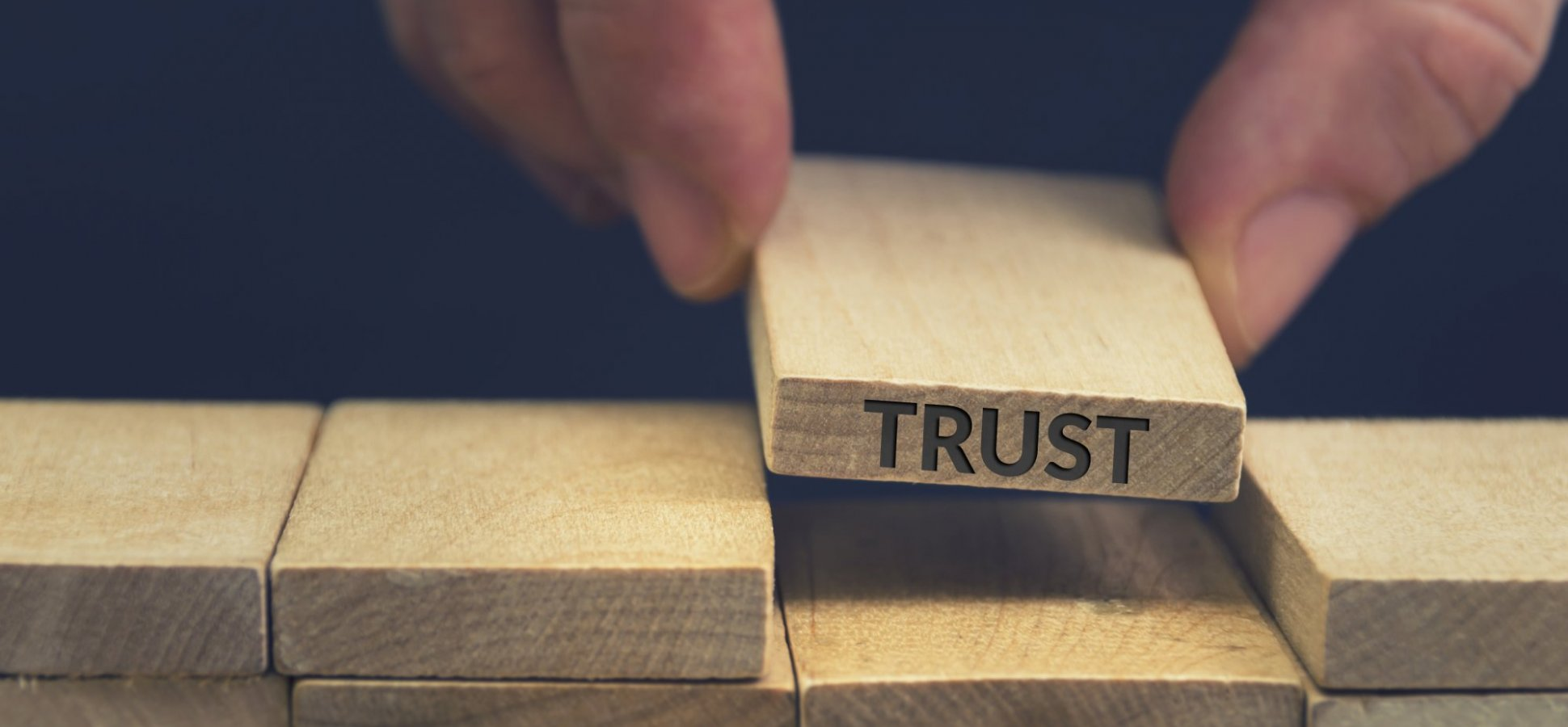 If You Want to Innovate Consistently, You Need to Build an Ecosystem of Trust