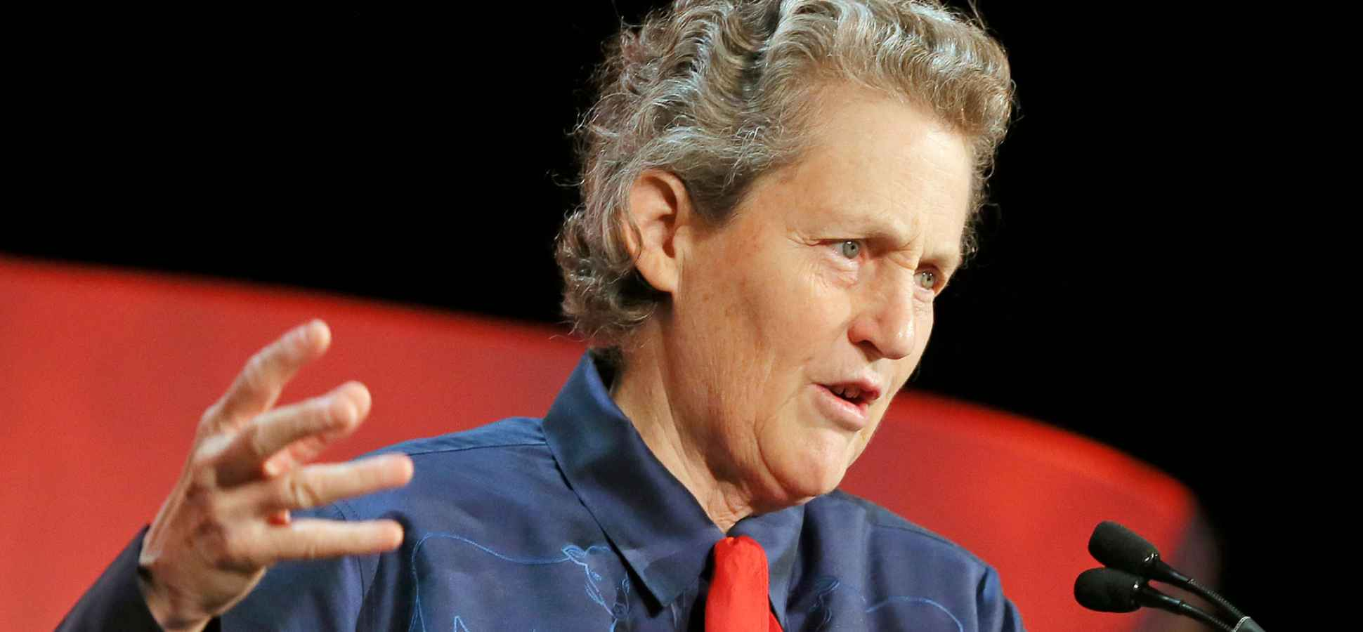 """Temple Grandin on """"Happy Aspies,"""" Autism, and Start-Ups"""