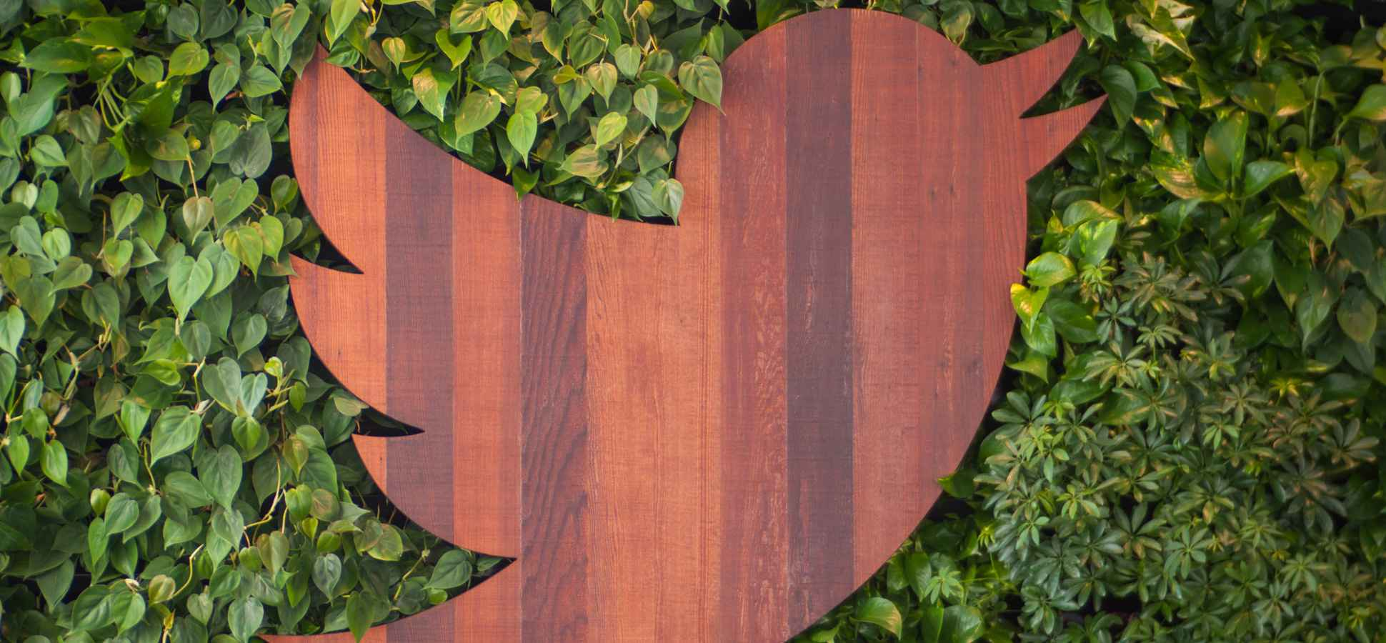 Twitter Interns Make the Equivalent of $81,000 a Year (Yikes!)
