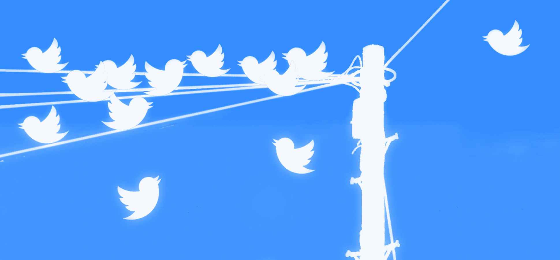 Newly Relaunched Twitter for Business