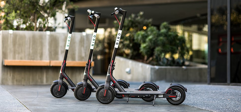 Bird's electric scooters
