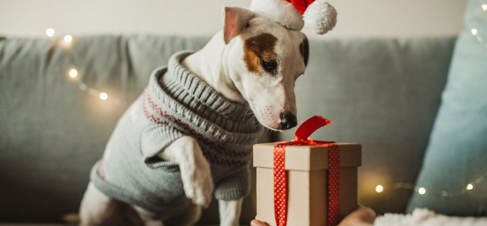 Online Holiday Shopping to Reach Record $910 Billion in 2021