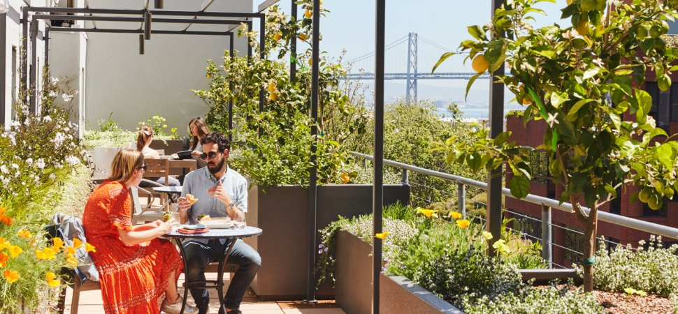 From PayPal to LinkedIn, These Are the Coolest Outdoor