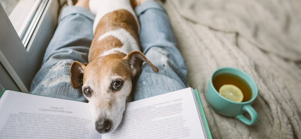 10 Inspiring Books to Read During Hard Times