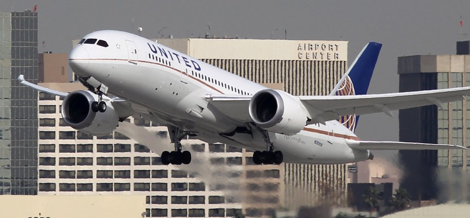 A United Airlines Flight Attendant Forced a Passenger To Put Her Dog Into an Overhead Bin (Yes, the Worst Happened)