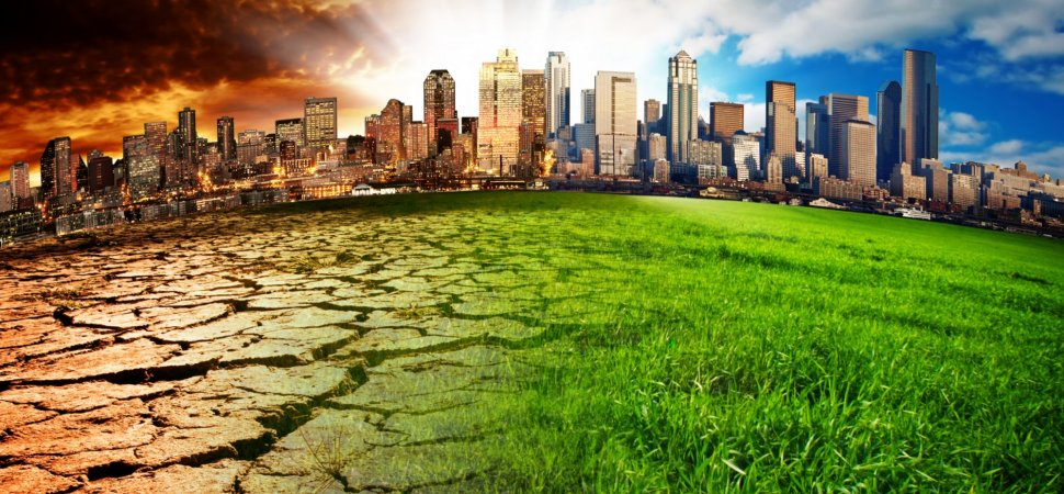 5 Things You Can Do to Ease Global Warming (Besides Turning