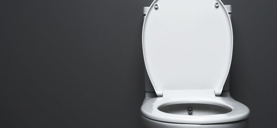 Fantastic The Toilet Challenge Is An Example Of 21St Century Ibusinesslaw Wood Chair Design Ideas Ibusinesslaworg