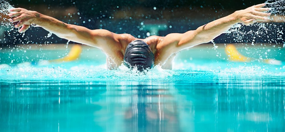Image result for swimmers