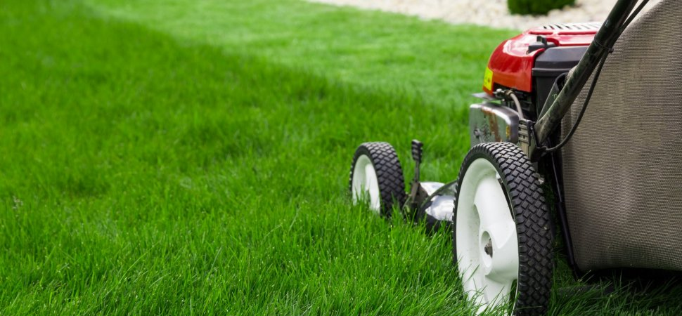 5 Ways Lawnmower Parents Hurt More Than They Help (Even