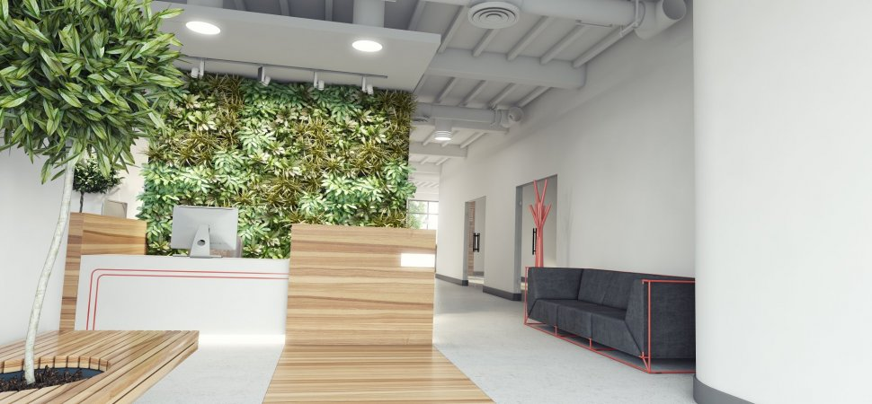 Put Mother Nature To Work With Biophilic Design Inc Com
