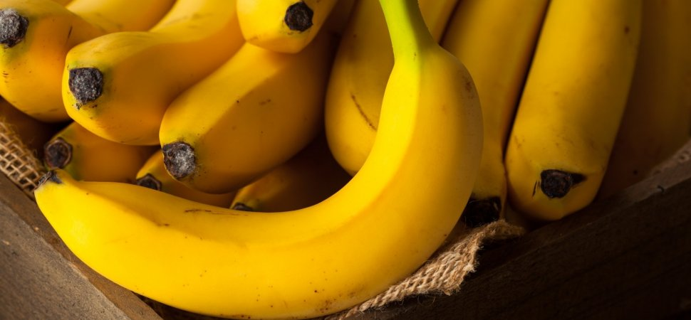 You Love Bananas? Scientists Say You Should Prepare To Live Without Them