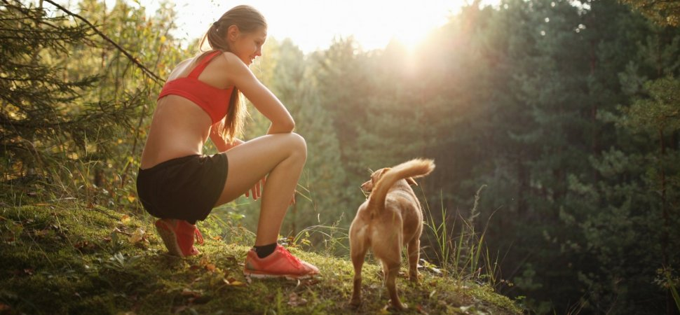 Scientists Hope to Cure Aging in Humans, Testing Drug On Dogs