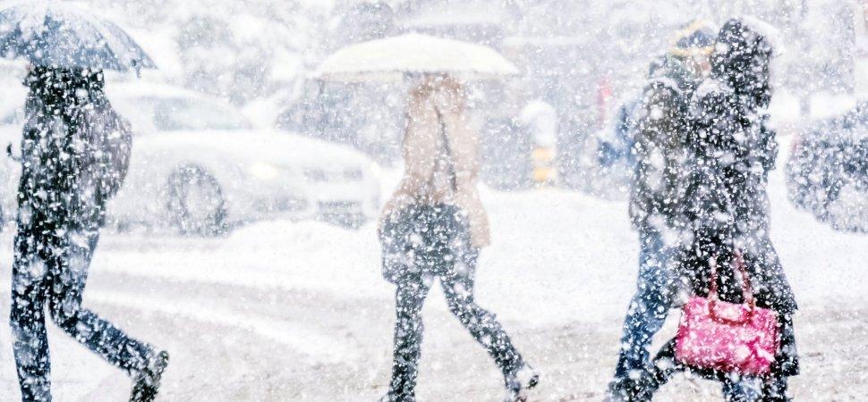 how should companies handle snow days inc com