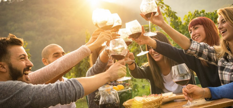 A Massive New Harvard Study of 21,000 People Says Drinking 1 Glass ...