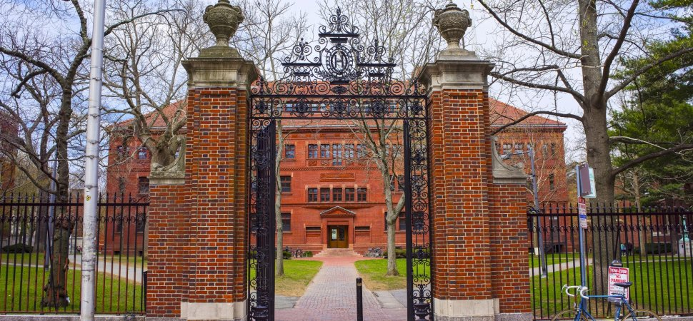 These 9 People All Got Rejected at Their First Choice Colleges