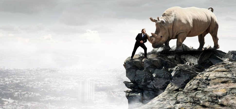 3 Lessons Learned from Competing Against a Silicon Valley Unicorn