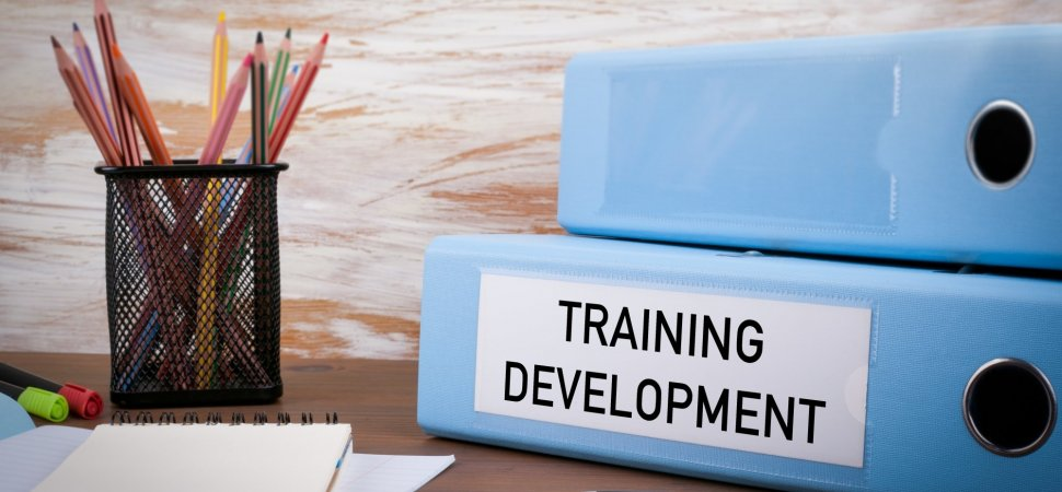 Employee Retention Hinges on Development and Learning Opportunities image