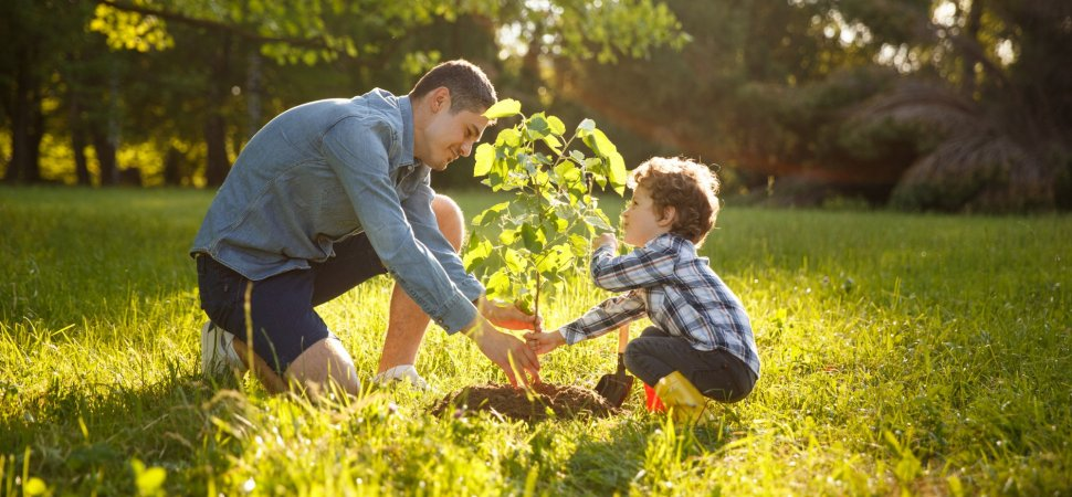 3 Ways To Sow The Seeds Of Your Startup S Success This Spring