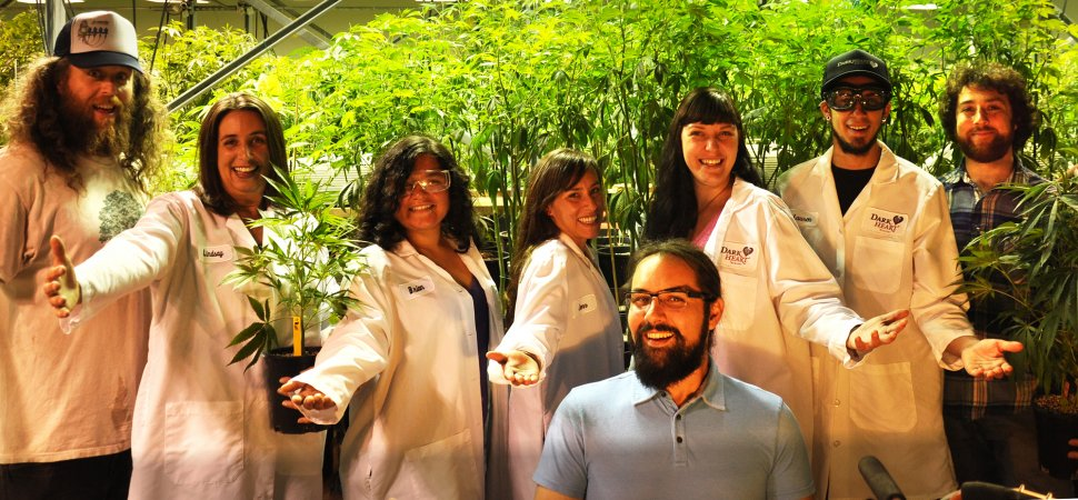 Meet the Founders Who Grow the Mother of All Cannabis Plants